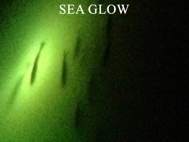 Sea Glow Underwater Light